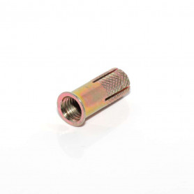 M10 x 30mm Drop In Anchor Z/P