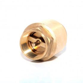 25Nb Brass Spring Check Valve - Brass Spindle
