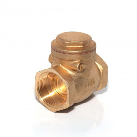 32Nb Brass Swing Check Valve