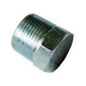 25Nb Gal Steel Hex Head Plug