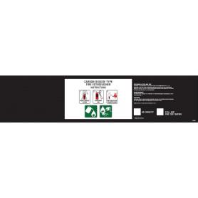 Portable Extinguisher Label - CO2