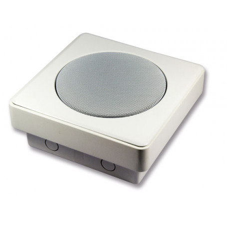 6 Watt Vandal Resistant Surface Mount Speaker