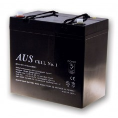 55AH 12VDC Lead Acid Battery