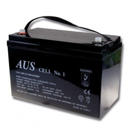 100AH 12VDC Lead Acid Battery