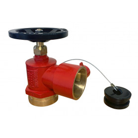 BIC - Roll Grooved FlameStop Fire Hydrant Landing Valve