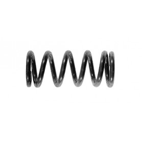 2.0kg to 9.0kg Discharge Spring Stainless Steel
