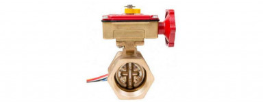 Brass Butterfly Valves cw Monitor BSP