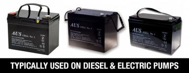 12VDC Deep Cycle Lead Acid Batteries